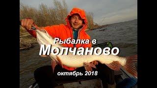 Рыболовная база в молчаново томской области