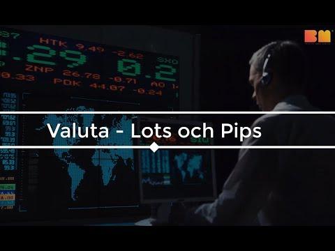 Lär Dig Trading – Lots och pips