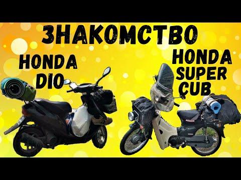 Знакомство Honda Super Cub и Honda Dio | Первая встреча двух легенд