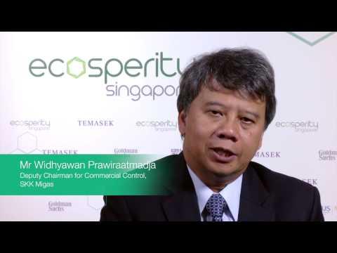 Widhyawan Prawiraatmadja, Deputy Chairman for Commercial Control of SKK Migas (Energy)