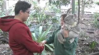 SDP Brisbane (2019) Student Documentary