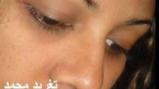 تحميل اغاني عبد الدافع عثمان ياملاكى تغريد محمد MP3