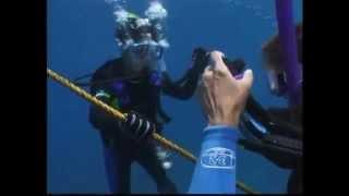 Open Water Diver PADI PL Część 1
