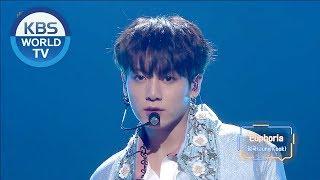 BTS Jungkook - Euphoria [2018 KBS Song Festival / 2018.12.28]