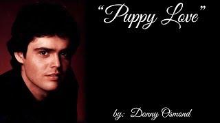 Puppy Love (w/lyrics)  ~  Donny Osmond