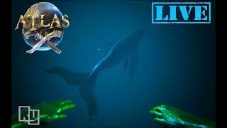 Atlas Whale - TH-Clip