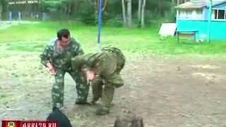 6Принцип защиты  Защита от ударов mpeg4