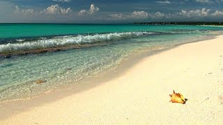 8 HOUR Relaxing Music - Castaway Beach with Ocean Sounds, Soothing Waves