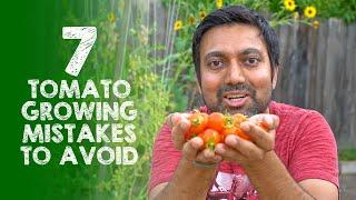 Avoid These 7 Tomato Growing Mistakes