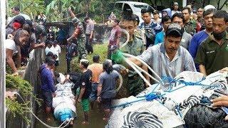 Video Evakuasi Buaya yang Memangsa Deasy Tuwo di Ranowangko, Ini Penampakannya