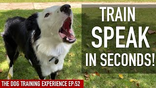 How To EASILY Prepare Your Canine To SPEAK in SECONDS! AND to STAY NO MATTER WHAT!