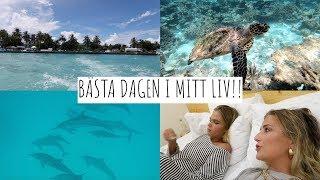 VLOGG | Simmar Med Delfiner & Sköldpaddor I MALDIVERNA!!!