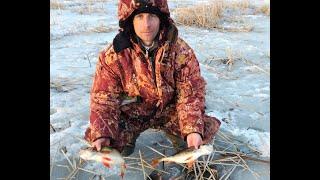Ловля окуня на озере неро зимой