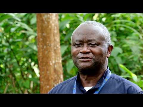 Protection de la dernière forêt du Mayombe (Luki) avec WWF appuyé par l'UE
