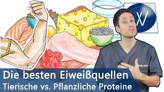 Die besten Eiweißquellen für Muskelaufbau & Immunsystem: Pflanzliche vs. tierische Proteinquellen