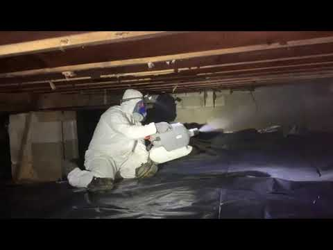 This homeowner in Freehold, NJ recently discovered mold in his crawl space. He immediately contacted Mold Solutions by Cowleys to resolve this hazardous issue.