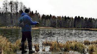 Рыбалка на ноябрьские праздники 2020 беларусь