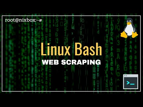 How to Scrape a Web Page Using Bash Script