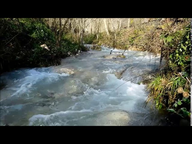 Torrente Maricella Licenza – video