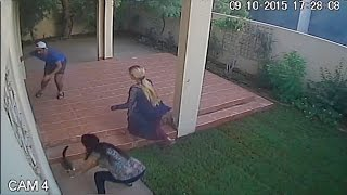CCTV Footage of 2 Wild Cats Escaping their Owners !!!