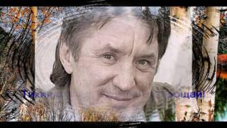 "AUTUMN is over ( Sergey Drozdov ) Сергей Дроздов "" ОСЕНЬ  ПРОШЛА "" Минусовка Алексея Кравца"
