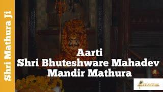 Mahadeve Aarti at Shri Bhuteshware Mahadev Temple Mathura