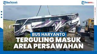 Kecelakaan Jelang Pemberlakuan Larangan Mudik, Bus Haryanto Terguling di Jalan Tol Pejagan-Pemalang