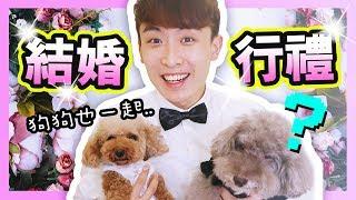 【💍結婚?】和狗狗一起「行婚禮、影婚照」🤵!?Wedding with Dogs!(中字)