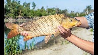 Рыбалка в волгограде и области на сазана