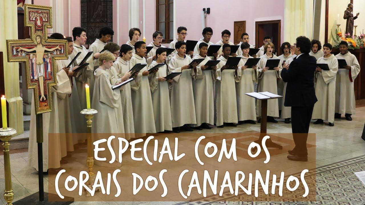 Especial com os Canarinhos #04 | Festa da Penha