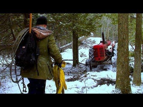 Breaking Trail, Hauling Timber- Log Cabin Update- Ep 10.1