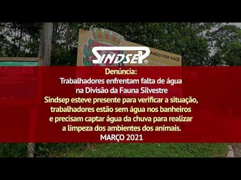 Denúncia: Trabalhadores enfrentam falta de água na Divisão da Fauna Silvestre