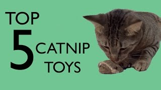 Top 5 Catnip Toys