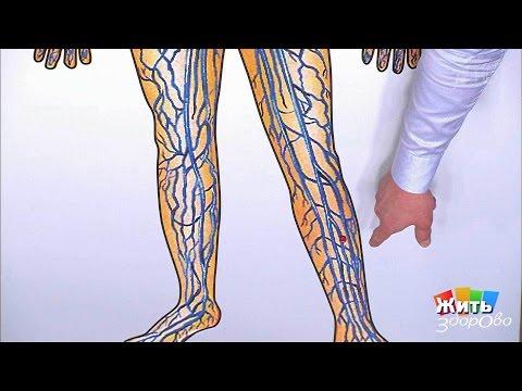 Подвижный коленный сустав