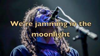 Tribal Seeds- Moonlight (Lyric Video)