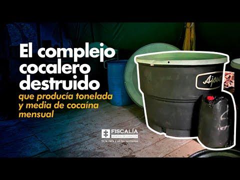 El complejo cocalero destruido que producía tonelada y media de cocaína mensual