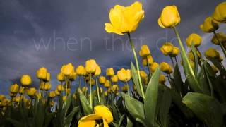 I Can Only Imagine - MercyMe (Lyrics Video) (HD)