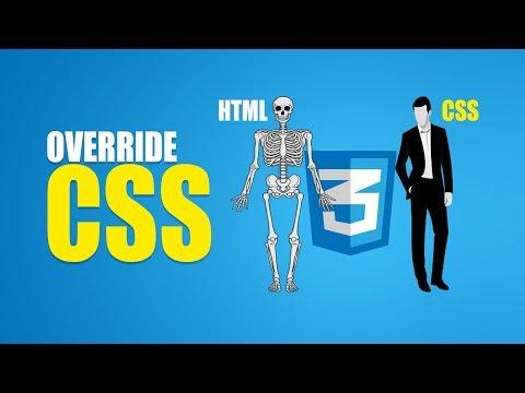 BrushUp Your CSS | Override CSS | Eduonix