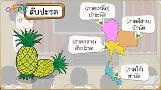 สื่อการเรียนการสอน ภาษาไทยมาตรฐาน และภาษาถิ่น ป.3 ภาษาไทย