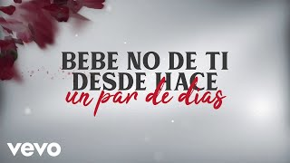 No Se De Ti (Audio)