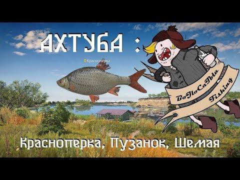 Ахтуба - Красноперка и КО