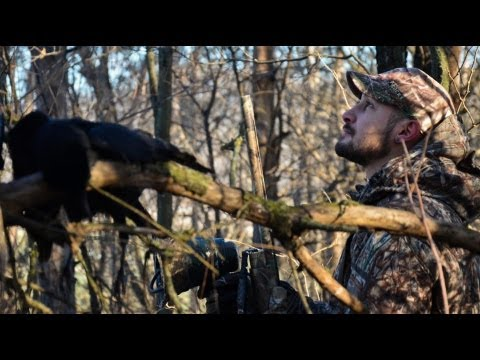Wisconsin Crow Hunting With The GoPro