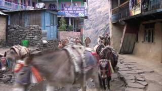 preview picture of video 'Annapurna Circuit - Dag 03 - Ngadi Bazar - Jagat'