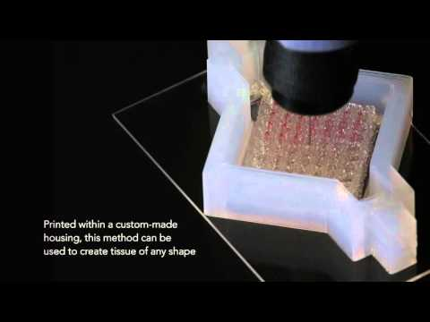 Printing Vascular Tissue