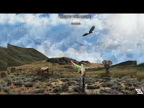 להמציא את הטבע מחדש - ארט מדהים!