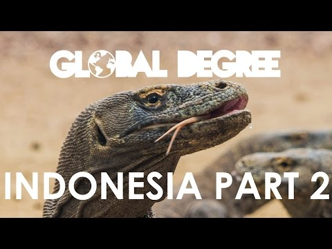 Indonesia - Almost Killed By Komodo Dragons!