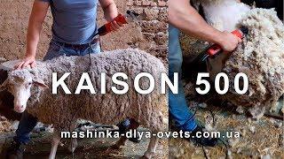 Машинка для стрижки овец - Kaison 500