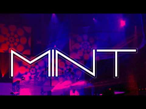 Restricted Zone – MINT (House  Electro  Trance DubStep  Hard Trance  Dutch) 2013 – 2014