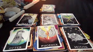 Messages from Your Person | What's Going on with Them? 💌 Pick A Card!
