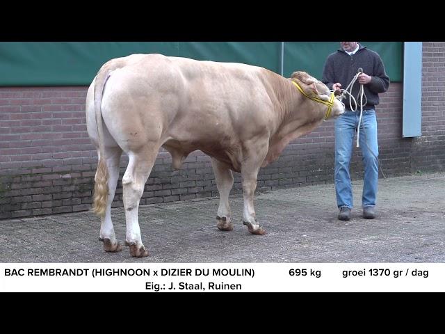 BAC Rembrandt NL662471642
